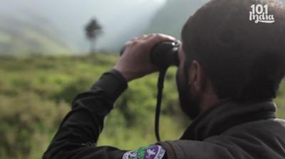 We Walk Through The Woodlands Of Kashmir With A Forest Ranger Thumbnail