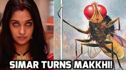 How Heroines Turn Into Naagins, Makkhis And Cheentis