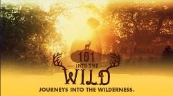 101 Into The Wild