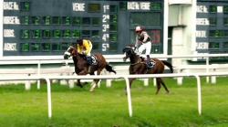 Horse Racing In Kolkata - The Anglo Indian Jockeys